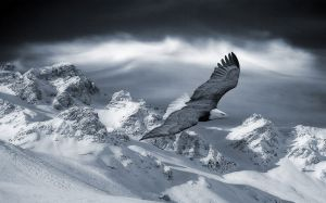 Images Of Snowy Mountains
