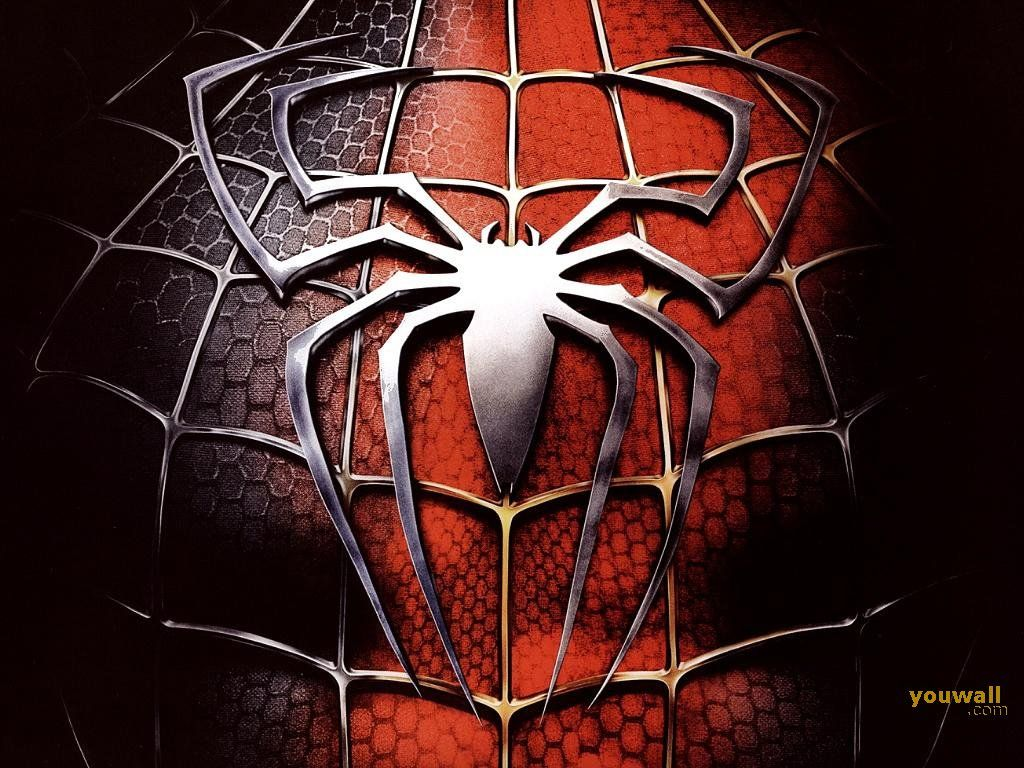 Spiderman 3 Hd Wallpapers And Backgrounds Spiderman Web Of