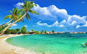 Wallpaper Tropical Beach