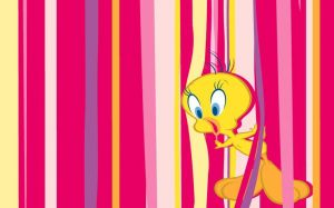 Tweety Bird Photo