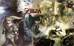Twilight Princess Picture
