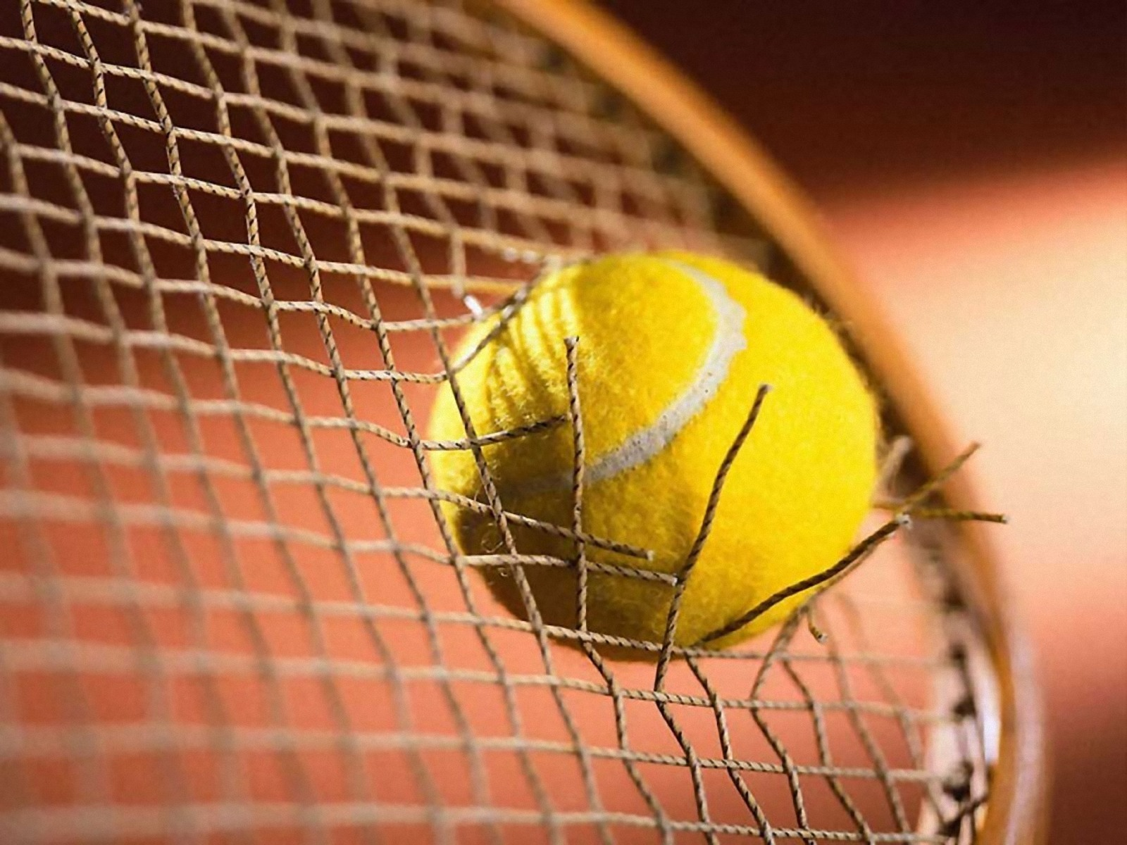 30 Best Tennis Wallpapers In High Quality Marjani Bradmore