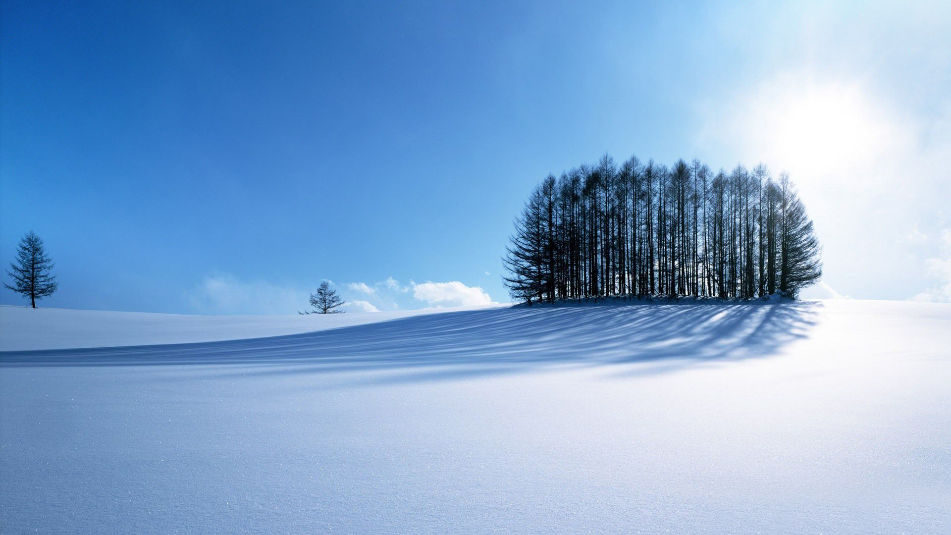 widescreen-winter-wallpaper