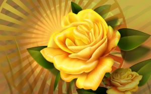 Image Yellow Roses